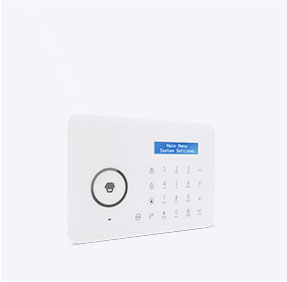 Dual-Network Alarm System
